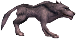 Hungriger Blauwolf.png
